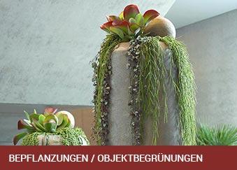 beitragsbild_bepflanzungen_339x243px